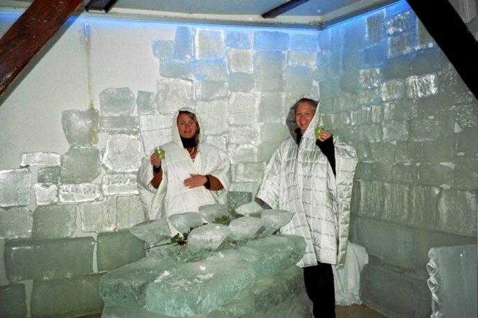 Isbar på Island