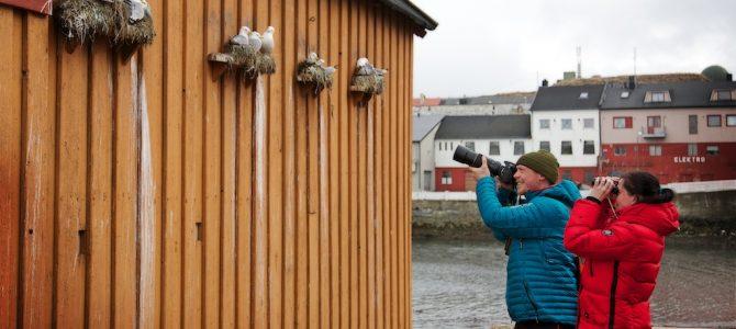 Se: Biotope med fugleturismei Varanger