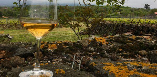 Storbyhelg: Sicilia – fra vin til Etna