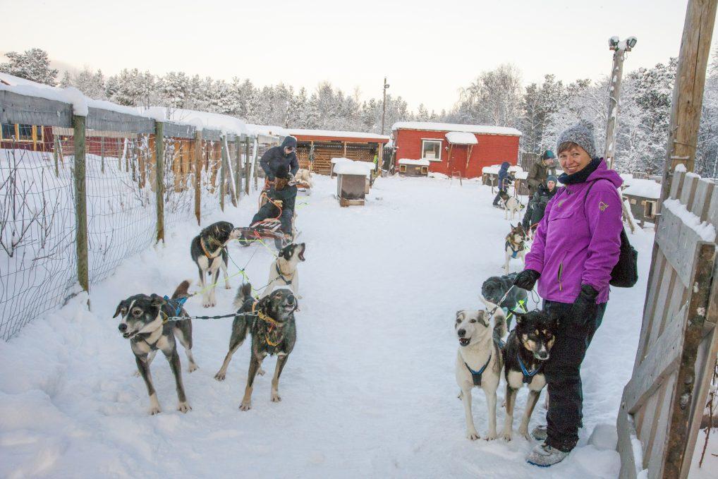 Hundekjøring hos Trasti&Trine i Alta