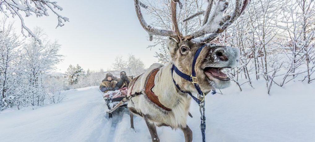 Reiseguide: Vinteropplevelser i Alta