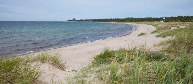 Guide: Sommerferie på Gotland