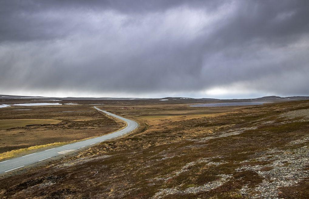 Mygg i Finnmark gjør også nytte for seg